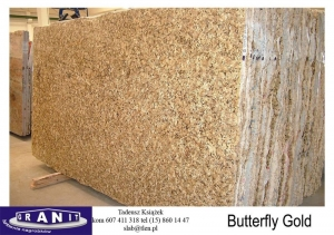 Butterfly-Gold-1