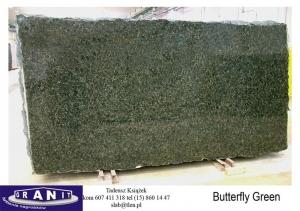 Butterfly-Green-1
