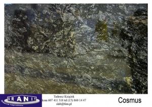 Cosmus-1