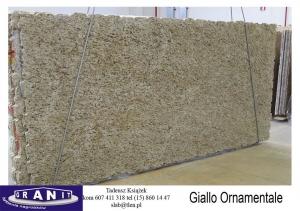 Giallo-Ornamentale-1