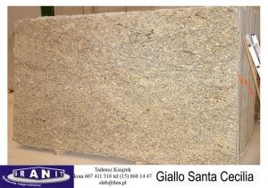 Giallo-Santa-Cecilia-1