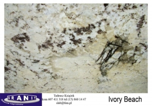 Ivory-Beach-2