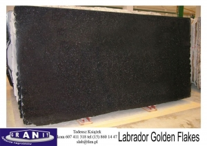 Labrador-Golden-Flakes-1