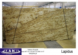 Lapidus-1