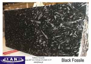Black-Fossile